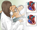 Echocardiography overview